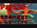 【シリーズ未経験者にもやさしい】世界樹の迷宮X 人生縛りプレイ part30