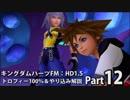 第32位:【キングダムハーツFM】トロフィー100%&やり込み解説【実況】Part12 thumbnail