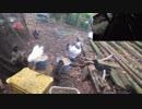 変なおじさんとこの 鶏さん187 カラスさんが やってきた