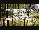 (ちょっとした告知あり)(ゆかマキ解説)変態忍者の、狩猟&有害鳥獣駆除従事活動記・その57