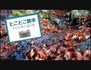 第30位:【ゆっくり散歩】とことこ散歩Part1【箕面大滝】 thumbnail