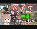 第60位:【秩父】ささらん車載でpart22 バイクで林道を走りに行こう!【奥武蔵GL】 thumbnail