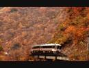 【のら】高山本線を走行するキハ85 その08 晩秋