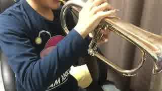【劇場版ガルパン】piece of youthをフリューゲルホルンで演奏してみた