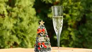 Merry X'mas ぼっちでクリスマス・パーティー【キッチン・ガーデン #15】