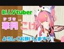 【ばーちゃる妖精】新人Vtuber華月 こけです【バーチャルキャスト】