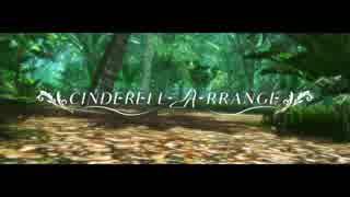 【デレマス】CINDERELL-A-RRANGE vol.5 OPムービー【デレンジツアー】