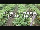 月一 ゆっくり野菜栽培 2018年12月号