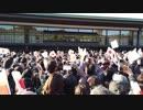 DJI OSMO POCKET 平成最後の一般参賀に行ってきた。