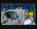 #2【海釣り】元旦からグレ(メジナ)釣り【磯フカセ】~前編~