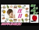 3-A 桜井誠、オレンジラジオ明日から本気出す… ~菜々子の独り言 2019年1月6日(日)