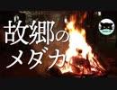 【故郷のメダカ】正月の帰郷と実家のメダカ