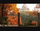 姫路城周辺 秋の散策 2018 autumn colors in Himeji