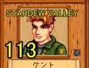 頑張る社会人のための【STARDEW VALLEY】プレイ動画113回