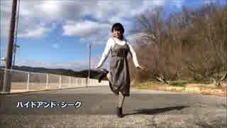 「ハイドアンド・シーク」踊ってみた【颯