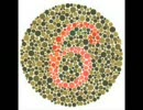 第39位:色盲テスト thumbnail