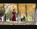 【踊ってみた】少女ふぜゐ【泠】【初めまして】