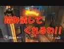 【OVERWATCH】ハム太郎でゴロゴロドッスンする動画【オーバーウォッチ】
