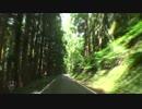 【車載動画】夏の国道345号「酷道」【2】