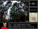 第35位:【ゆっくり】二子山RTA