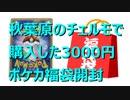 【開封動画】秋葉原で購入した3000円のポケカ福袋開封