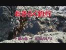 【城ヶ島】 おきらく釣行 【20190111後】