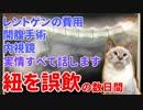 猫の紐誤飲から数日経過。レントゲン撮影の費用や開腹手術・内視鏡について
