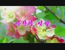 【北朝鮮歌謡】愛の光(사랑의 빛발) - ユ・ボンミ