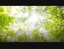 第39位:2hDTM【Ether】勇者、冒険のはじまり【オリジナル曲】 thumbnail