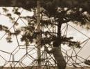 [驚愕]100年前の日本の日常風景