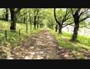 オリジナル曲 「君と歩いた道」