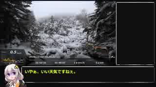 【RTA】ポケモンGO? 黒百合ヒュッテビー