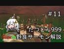 【たつじん999】野良サーモンでクリアしたい!Part11【紲星あかり実況】