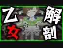 第60位:乙女解剖 歌ってみた【てるとくん】 thumbnail