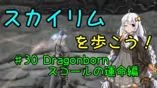 【Skyrim SE】スカイリムを歩こう!#30【VO