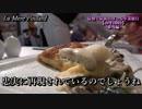 La Mère Poulardのオムレツを食べに行ってみた【東京】