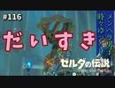 【実況】ゼルダ童貞による ゼルダの伝説BotW(ブレスオブザワイルド)Part116