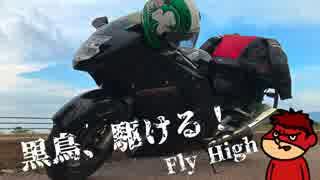 【VOICEROID車載】 黒鳥、駆ける!! 山梨・大洗編