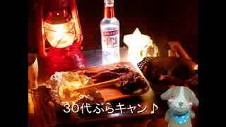 30代ぶらキャン♪ クリスマスっぽいキャンプ編②