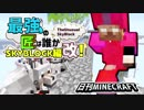 【日刊Minecraft】最強の匠は誰かスカイブロック編改!絶望的センス4人衆がカオス実況!#40【TheUnusualSkyBlock】