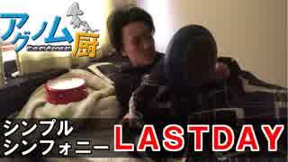 【ポケモンUSM】アグノム厨-6外伝-【シン