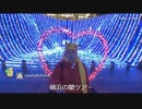 【野田草履】ドックヤードガーデン(横浜・造船所跡)イルミ