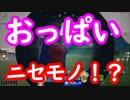 【フォートナイト】おっぱい・おしりの当たり判定さらに検証してみたらとんでもない結果に!!!