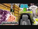 【日刊Minecraft】最強の匠は誰かスカイブロック編改!絶望的センス4人衆がカオス実況!#44【TheUnusualSkyBlock】