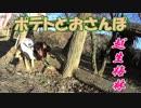第13位:ポテトとおさんぽin越生梅林2019【地元地域旅】