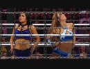 第1位:【WWE】初代女子タッグ王座決定エリミネーション・チェンバー戦  2/2