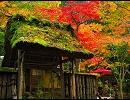 京都に行きたくなる動画【高画質版】 「そうだ、京都行こう」