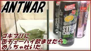 ゴキブリに缶チューハイ飲ませたらびっくりするぐらい吐いた。