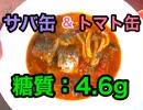 【ロカボ飯】1型糖尿病患者が作る「サバ缶のガーリックトマト煮込み」