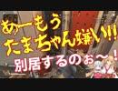 金剛いろは「たまちゃん嫌い!!!」夜桜たま「別居するのぉ~」【きんとたま】